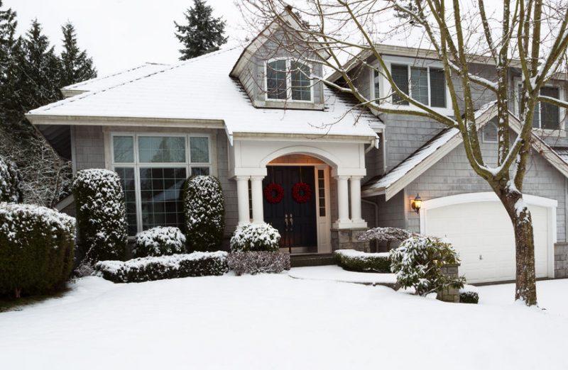 Winter Pest Control | Raven Termite & Pest Control