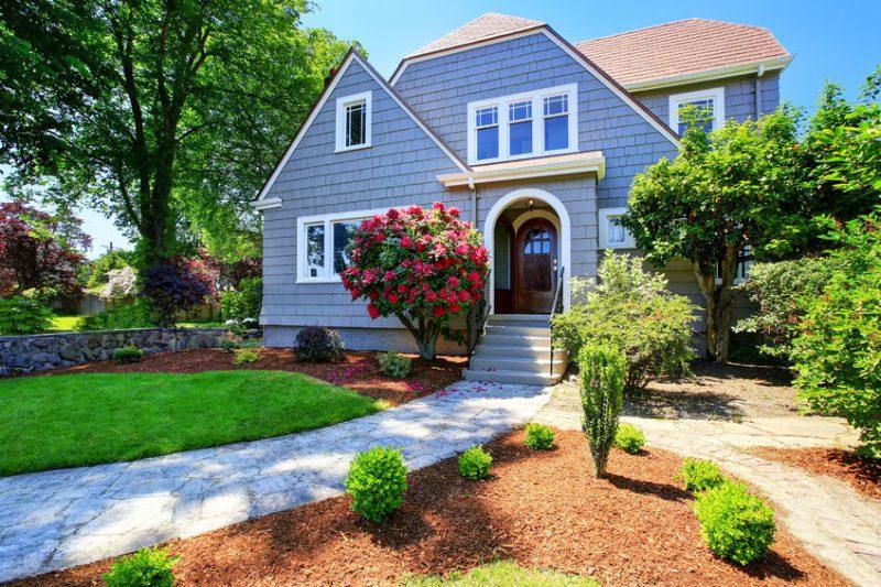 Spring Pest Control Tips | Raven Termite & Pest Control