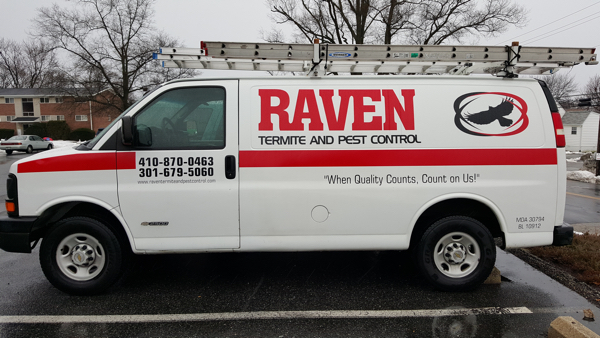 Pest Control in Montgomery County MD | Raven Termite & Pest Control