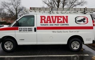 pest control in Howard County -- Raven Termite and Pest Control