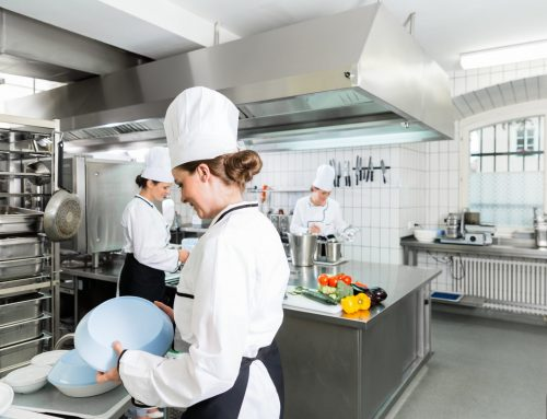Exterminator for Commercial Kitchen Pests